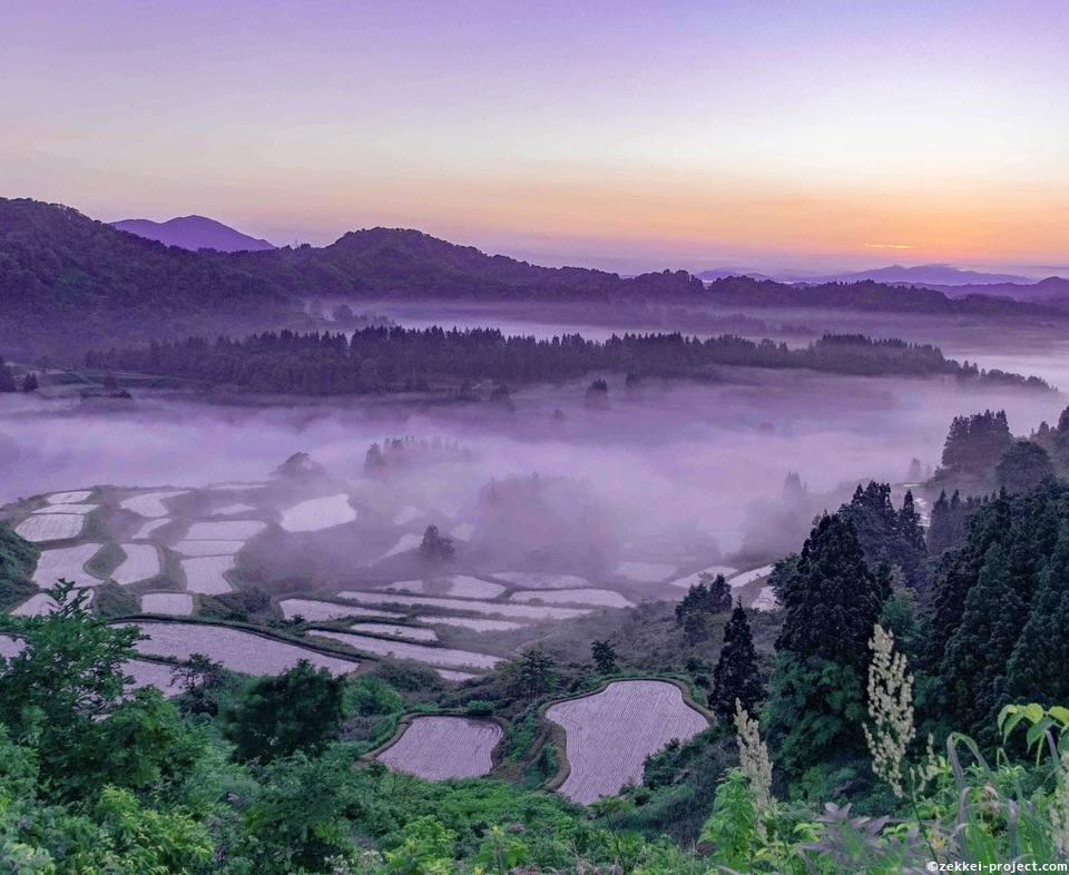 雲海に包まれる星峠の棚田 | 死ぬまでに行きたい!世界の絶景