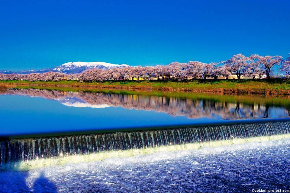白石川堤一目千本桜 韮神堰と蔵王連峰【宮城県】 | 死ぬまでに行きたい!世界の絶景
